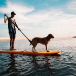 Dog Paddleboarding